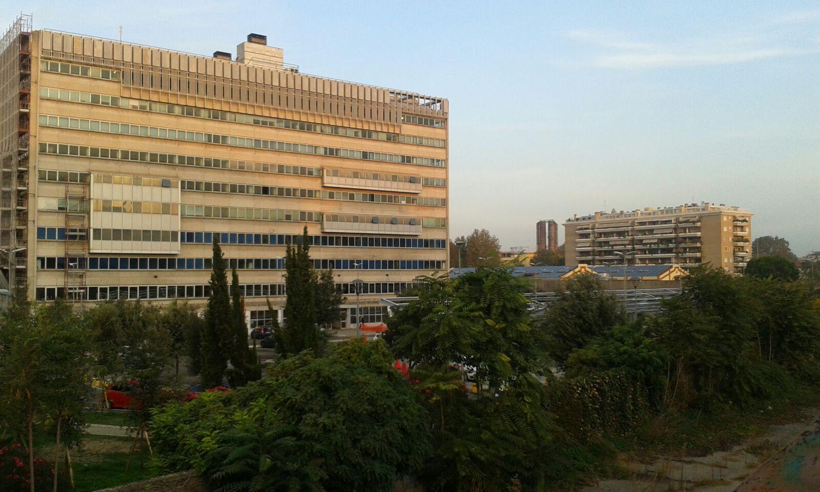 Roma Capitale | Sito Istituzionale | Conoscere il Dipartimento